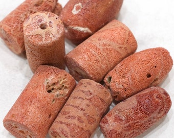 Beads Apple Coral Cylinders 22-28mm