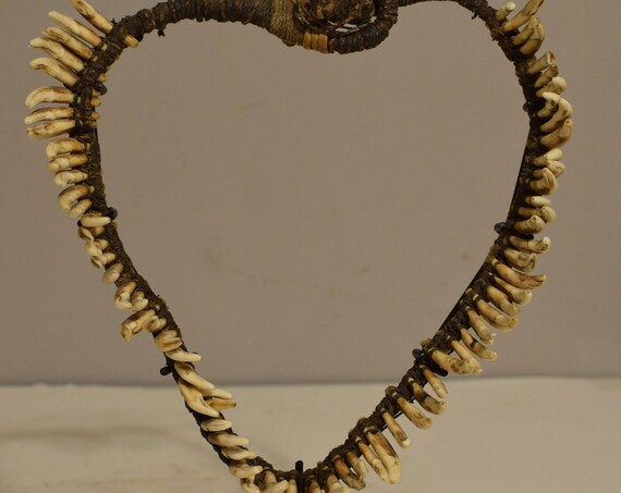 Papua New Guinea 1970 Dog Teeth Necklace Brides Price Currency Dog Teeth Necklace