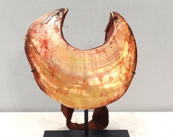 Papua New Guinea Necklace Kina Shell Melpa Tribe Currency Kina Shell