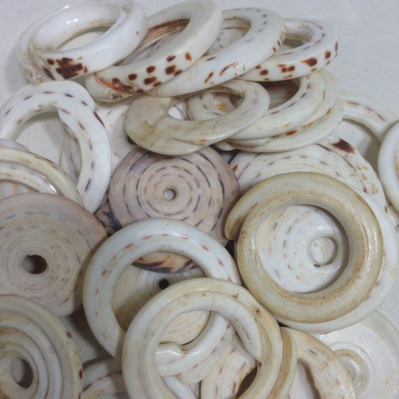 Beads Conus Shells Papua New Guinea Money Old Shells Wealth Bride Traded Shells Statement Jewelry 1  1/2 inch
