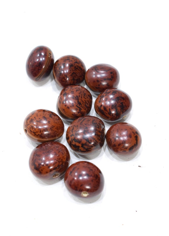 Beads Philippines Brown Lumbang Nut Beads 22mm