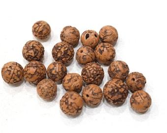 Beads Chinese Rudhraska Nut Mala Beads 14-15mm