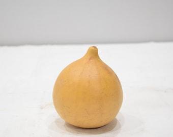 African Craft Gourds Home Made Folk Art Small Craft Gourd