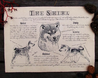 Antique styled dog standard - Shiba