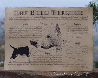 Antique styled dog standard - Bull terrier