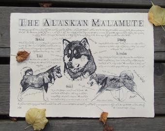 Antique styled dog standard - Alaskan Malamute