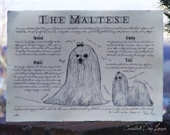Antique styled dog standard - Maltese