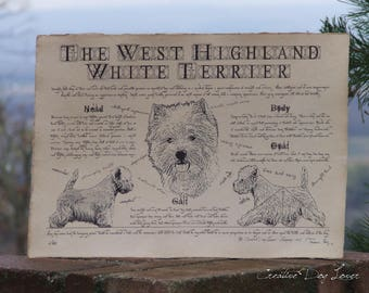 Antique styled dog standard - West Highland White Terrier