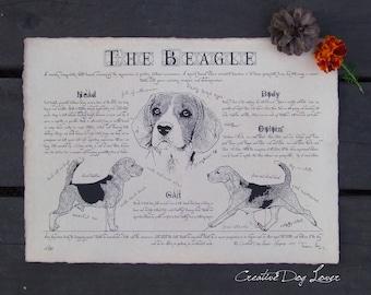 Antique styled dog standard - Beagle