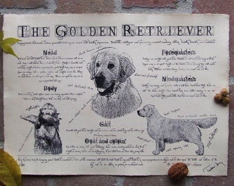 Antique styled dog standard - Golden Retriever