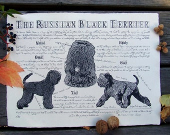 Antique styled dog standard - Russian Black Terrier