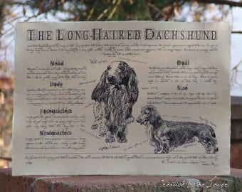 Antique styled dog standard - Dachshund long-haired
