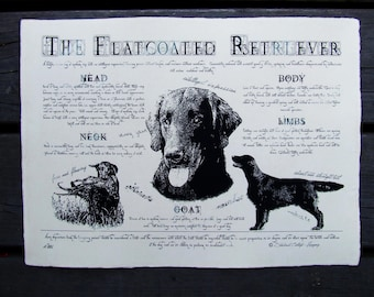 Antique styled dog standard - Flatcoated Retriever