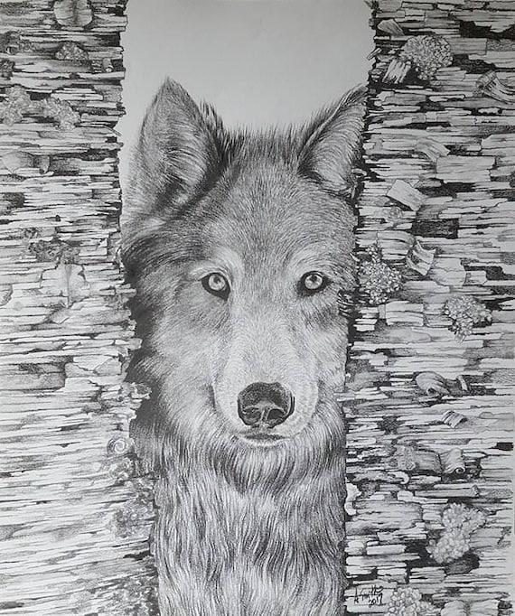 Dessin Loup Loup Original Dessin Crayon Graphite Dessin Oeuvre Etsy