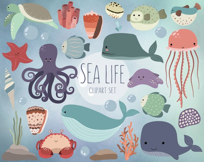 Sea Life Clipart - 25 Cute Ocean Animals Clip Art Set - Quality Vector, PNG & JPG 300 DPI Summer Clipart, Adorable Beach Art
