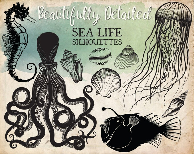 Ocean Life Silhouettes Clipart - Beautifully Detailed Sea life Vector & PNG Clip Art - Unique Beach Clipart, Summer Clipart