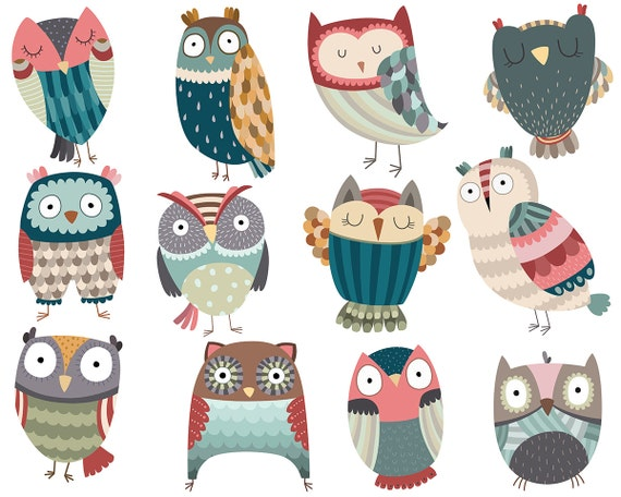 Owl Clipart - Set of 12 Unique Hand Drawn Owls - 300 DPI Vector, PNG, & JPG Files - Cute Birds Clip Art and Grahpics