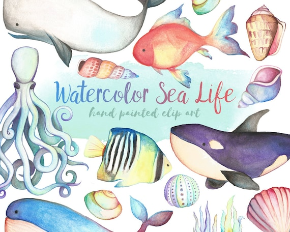 Watercolor Sea Life Clipart - Watercolor Clipart, Hand Painted Clip Art, Unique Ocean Clipart, Watercolor Digital Printable