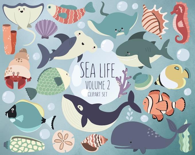 Sea Life Clipart Volume 2 - Ocean Clip Art Set - 24 Hi-Res Vector, PNG, & JPG Designs, Summer Clipart, Beach Clipart Download