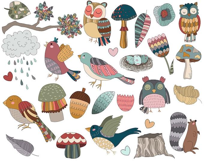 Cute Woodland Birds and Design Elements Clip Art - Set of 25 300 DPI Vector, PNG, and JPG Digital Files - Vintage, Autumn Clipart Download
