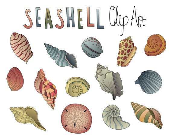 Vintage Seashells Clip Art- Set of 14 PNG, JPG and Vector 300 DPI Files