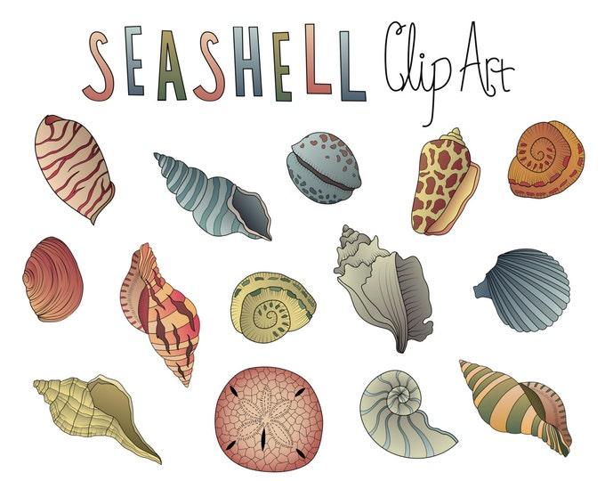 Vintage Seashells Clip Art- Set of 14 PNG, JPG and Vector 300 DPI Files