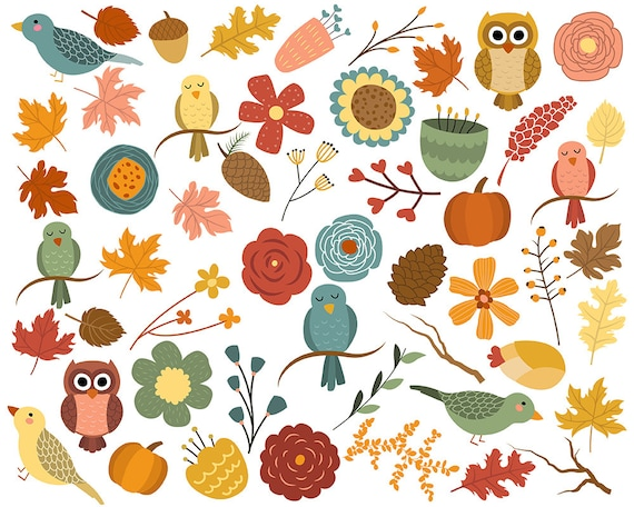 Autumn Leaves and Fall Florals Clip Art - Set of 53 PNG, JPG, and Vector Files - Hand Drawn Design Elements Clipart Digital Download