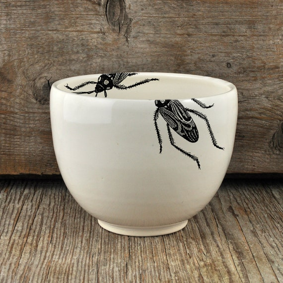 Porcelain coffee bowl with vintage INSECT prints