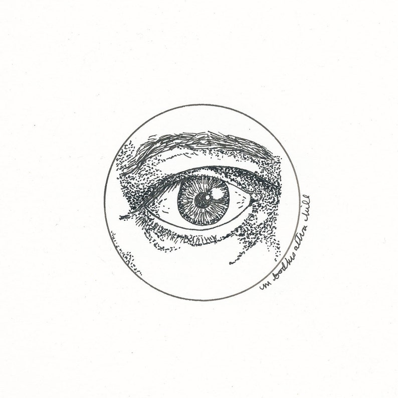 Eye  Original Pen and Ink Drawing  Free Shipping image 0