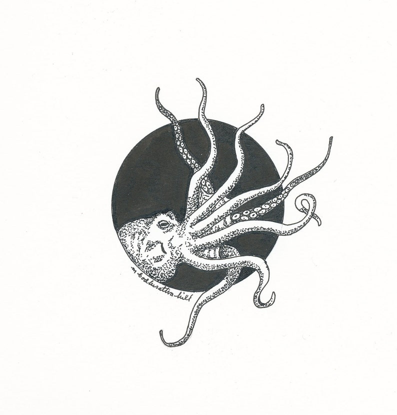 Octopus  Original Pen and Ink Drawing  Free Shipping image 0