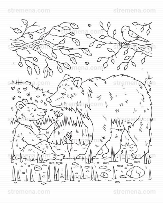 Woodland Animal Coloring Page - Coloring Home | 713x570
