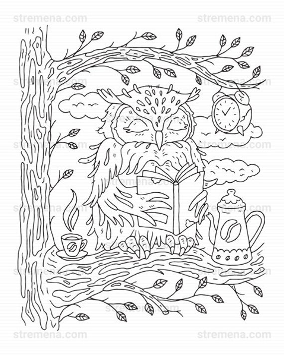 Lynx Wildcat And Owl Printable Animal Coloring Pages Etsy