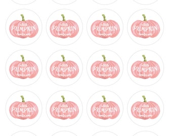 Pink Pumpkin girl baby shower cupcake toppers or favor tags