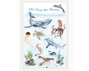 Animals of the Sea Poster A2, Marine Animals