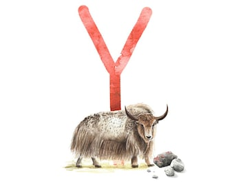 ABC card Y like yak, letters ABC, ABC cards