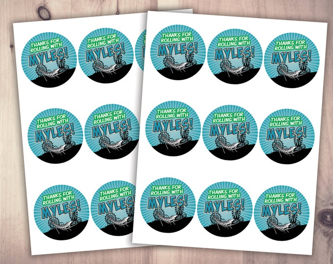 Digital Amusement Park party, stickers  / party favor label /  super hero birthday, rollercoaster, cupcake toppers