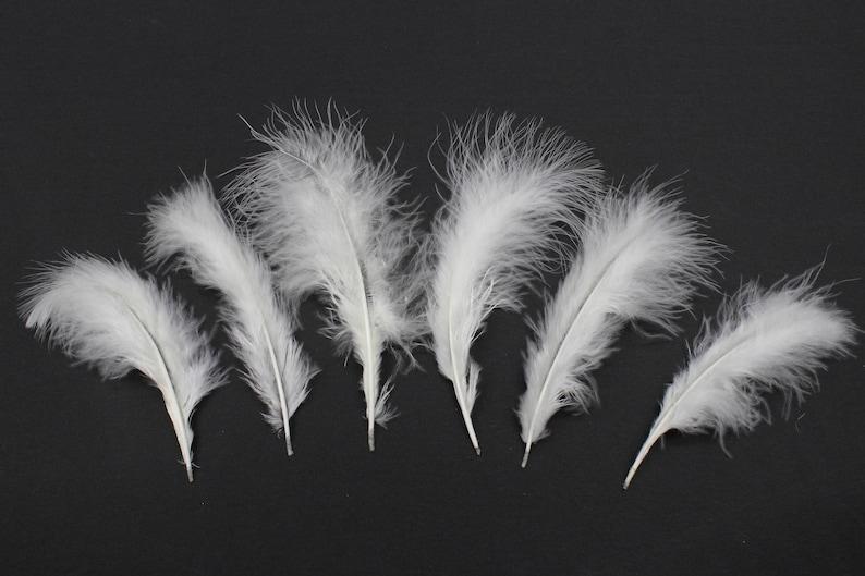 "30 Pcs TURKEY PLUMAGE Feathers 2-5/"" TURQUOISE; Crafts"