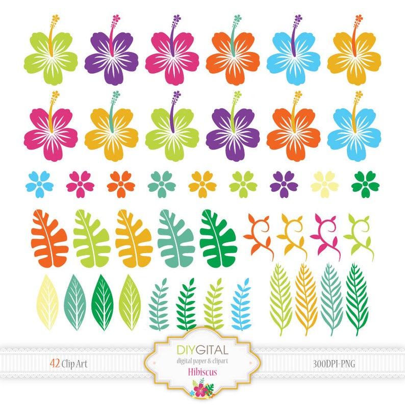 Establece Imagenes Predisenadas De Hibisco Flores De Colores Etsy