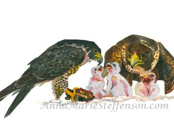 Falcon Cast Watercolor Print Second in Series of Three