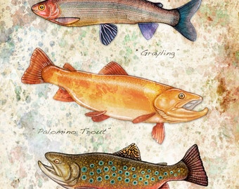 Golden Palomino Trout Watercolor Pencil Painting or Print