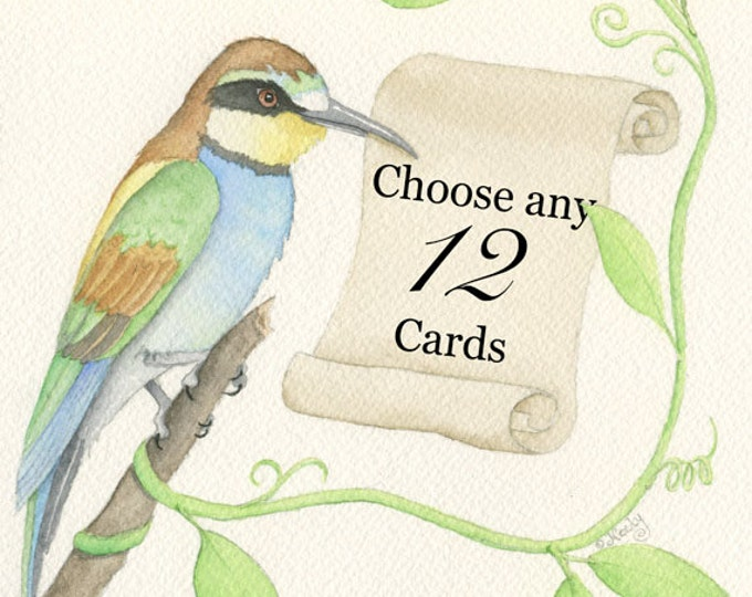 Greeting Cards, Your Choice of Any Twelve (12)