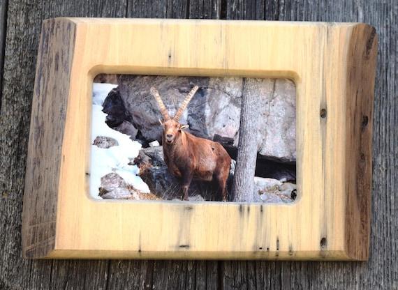 wood anniversary / rustic wall decor / alpine ibex photo / cabin ...
