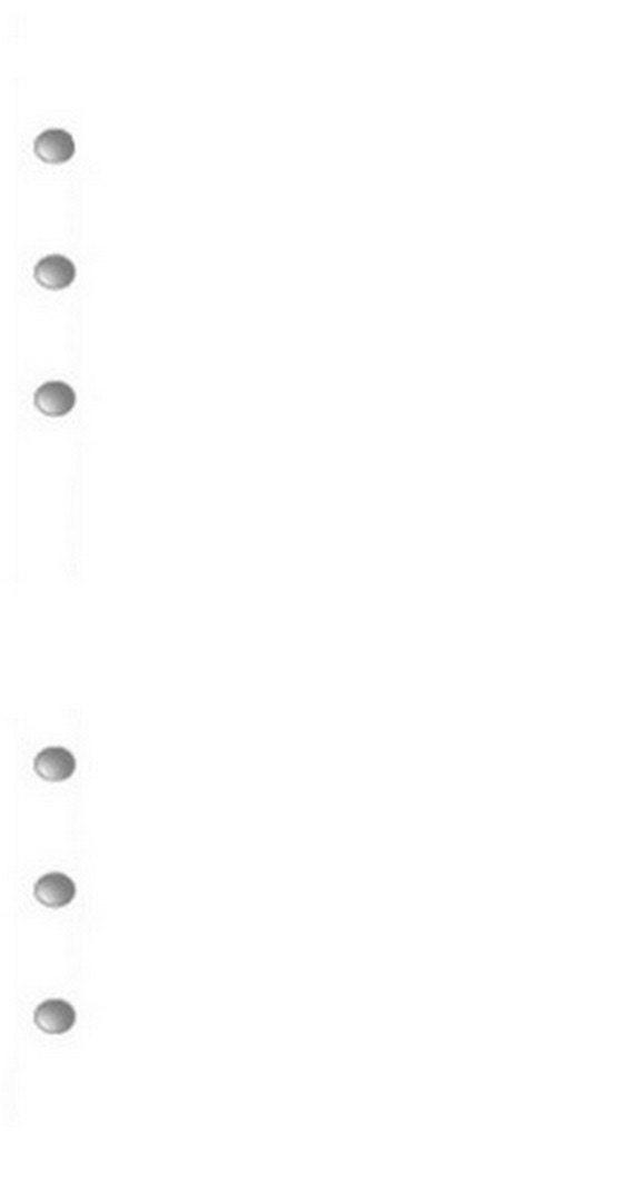 30 sheets blank filofax paper