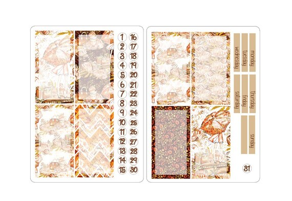 TN regular boxes stickers kits 3