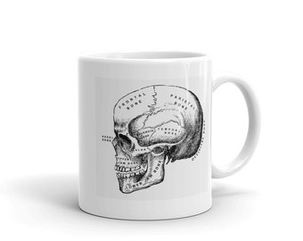 Skull Anatomy Mug