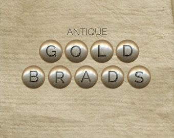 Gold Brads : Digital Scrapbooking Alpha
