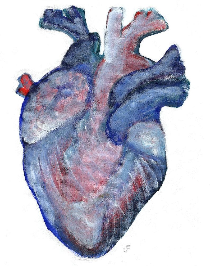 ACEO ART PRINT Anatomical Human Heart Painting Canada image 0
