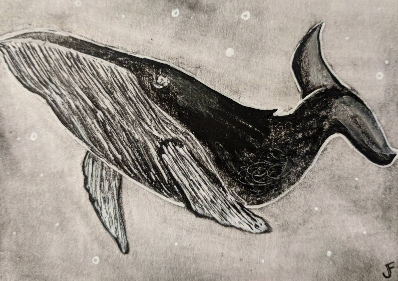 Whale Original ACEO Pencil Drawing Outsider Art Miniature image 0