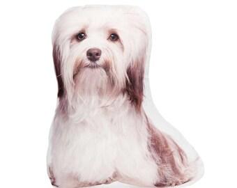 Havanese, Pet Gift Ideas, Havanese Dog, Whimsical Dog, Havanese Lover, Mothers Day, Mums Birthday, For Her, Housewarming Gift, Havanese Gift