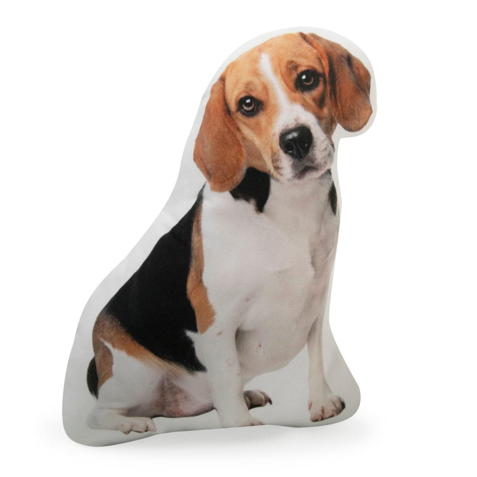Beagle Cushion